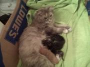 Mitzt & babies