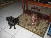 Leo & Noesby