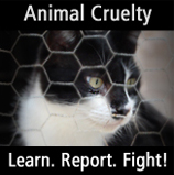Pledge to Fight Animal Cruelty